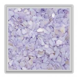 Violet Crushed Shell – 4g